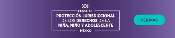 XXI Curso de Protección Jurisdiccional de los Derechos de la Niña, el Niño y Adolescente